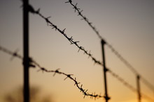 Black Silhouette Of A Barbed Wire Fence In Evening.