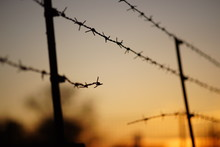 Black Silhouette Of A Torn Barbed Wire Fence At Sunset