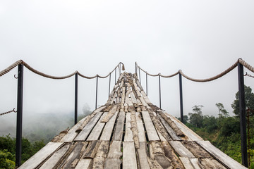 A wooden bridge over the jungle that breaks off at the end.