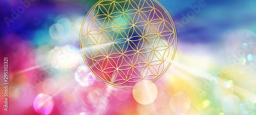 Fotografie, Obraz  Blume des Lebens entsendet aus kosmischer Tiefe ein buntes Spektrum strahlenden