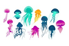 Colorful Glowing Jellyfish Drawing Set Isolated On White Background