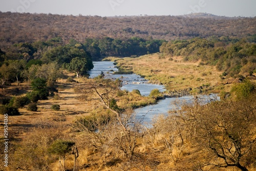 Canvas Prints Elephant Olifant river in South Africa