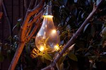 Closeup_vintage_solar Light Bu...