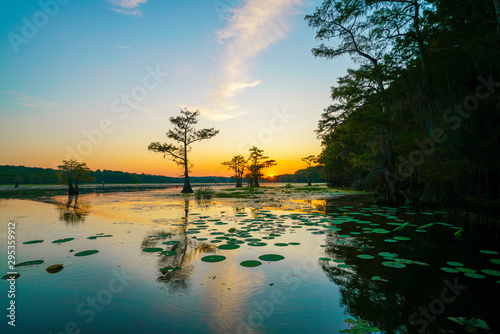 Sunset view with bald cypress trees and lily pads at Caddo Lake near Uncertain, Canvas Print