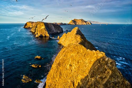 Vászonkép Seagulls Fly Above Inspiration Point - Anacapa Island