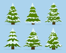 Set Of Firs In Snow. Collectio...