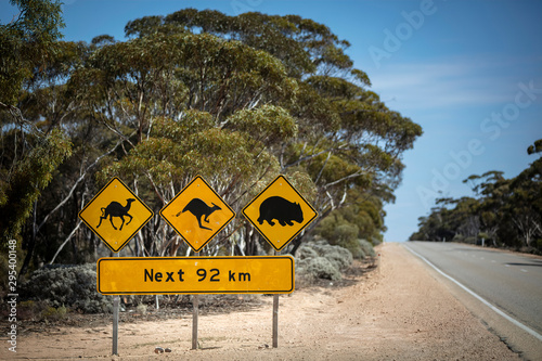 Foto op Canvas Kangoeroe Shallow depth of field view of Iconic sign advising drivers of the possibility of camels, kangaroos and wombats as traffic hazards on the Eyre Highway (Nullarbor Plain)