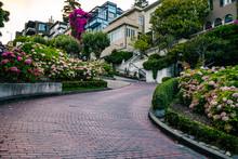 Lombard Street San Francisco City Life