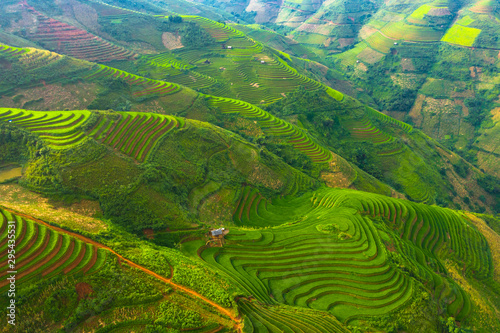 Foto auf Gartenposter Reisfelder Aerial top view of paddy rice terraces, green agricultural fields in countryside or rural area of Mu Cang Chai, Yen Bai, mountain hills valley at sunset in Asia, Vietnam. Nature landscape background.