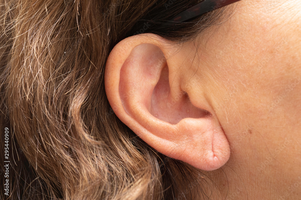 Fototapeta Female earlobe with piercing hole mark, ageing external ear skin