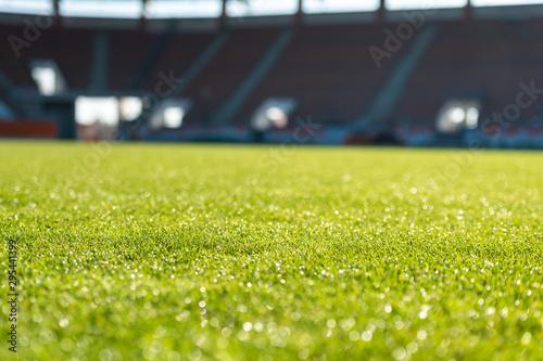 Wet grass at the football stadium Wallpaper Mural