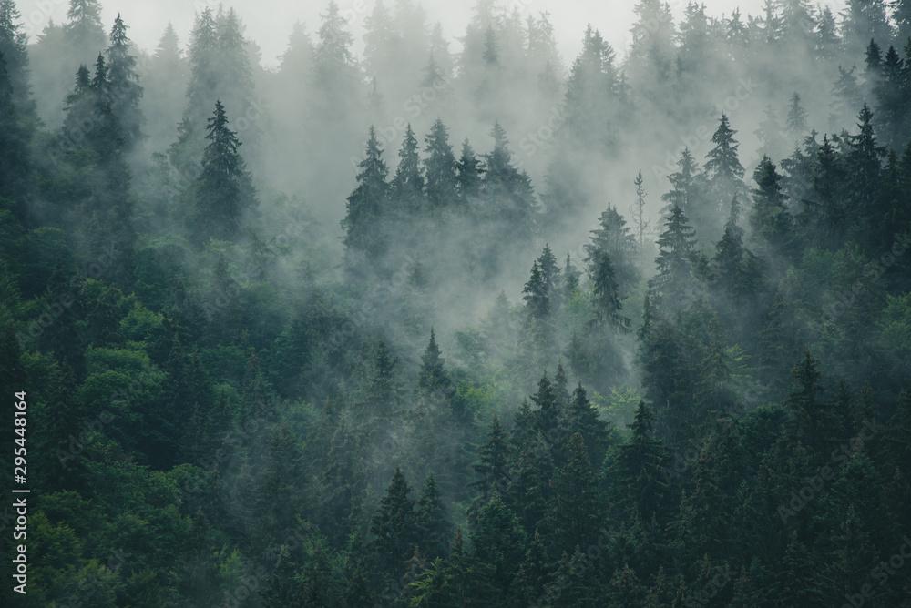 Fototapety, obrazy: Misty mountain landscape