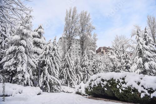 Fotobehang Snow landscapes from various regions of Ankara