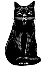 Vintage Style Vector Illustration. Angry Black Cat. Hand Drawn Graphic Picture. Digital Sketches Of Pet Animals. Wild Life Drawing. Design Element For Poster, Print, Postcard, T-shirt Etc.