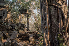 Iconic Beng Mealea Temple In Siem Reap Province, Cambodia