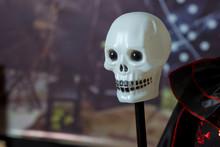 White Skull Head . Halloween Fake Skulls On A Iron Spike Pole .