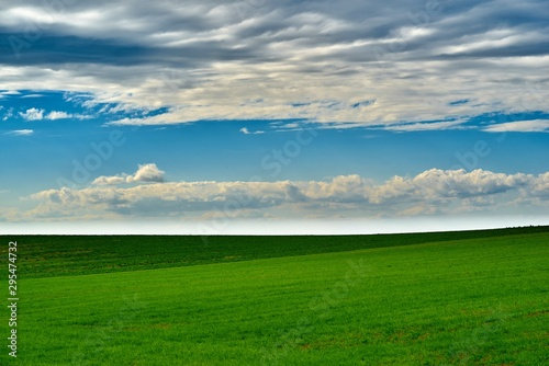 Foto op Plexiglas Groene agricultural landscape of the big green field against the background of the blue sky with white clouds