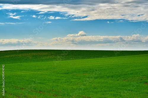 Foto op Plexiglas Groene agricultural landscape of the green field against the background of the cloudy sky