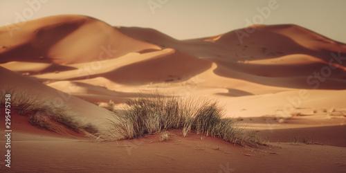 Fotomural marocco