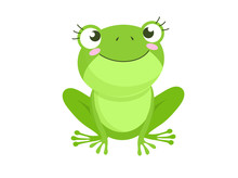 Cartoon Vector Of Green Cute Baby Frog Isolated On White Background
