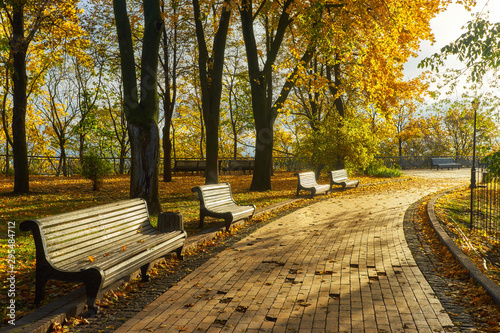 Foto op Aluminium Tuin bench in Autumn season with colorful foliage and trees.