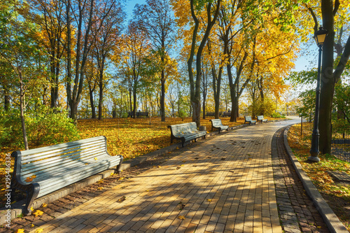 plakat Park with bench on alley in autumn