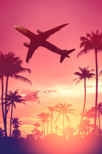 Airplane Flying Over Tropical Palm Tree And Birds On Sunset Sky Abstract Background. Copy Space Of Business Summer Vacation And Travel Adventure Concept.