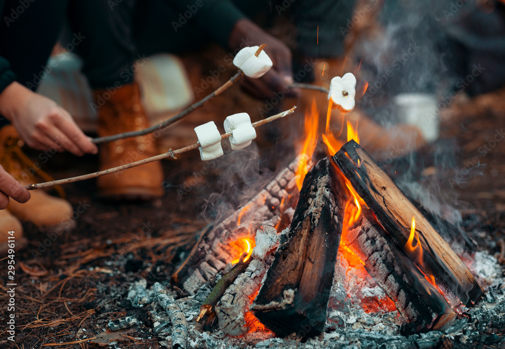 Fototapety, obrazy: Close up of people frying marshmallow in forest
