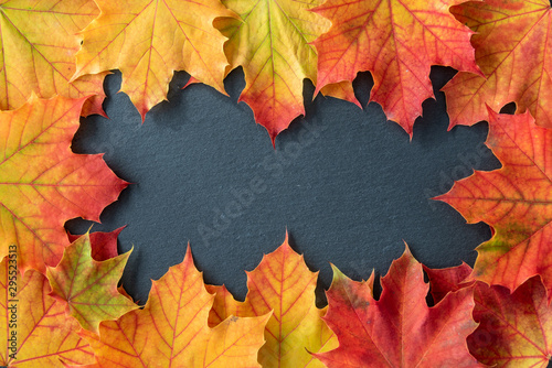 Border of orange and yellow maple leaves on a gray slate tile, as a fall nature background