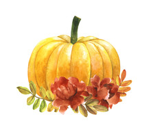Watercolor Pumpkin And Flowers...