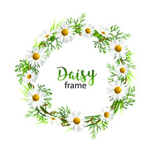 Round Frame, A Wreath Of Daisi...