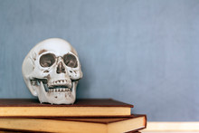 Skull On Top Of Books And Blac...