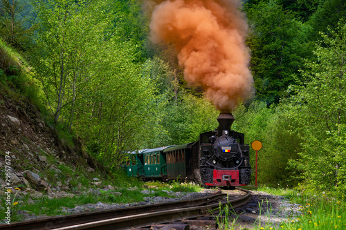 Cuadros en Lienzo Running wood-burning locomotive of Mocanita (Maramures, Romania)