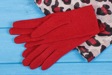 Woolen Gloves And Shawl For Wo...
