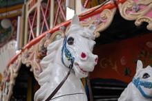 Head Of White Carousel Horse