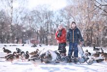 Children Feed Birds In The Park