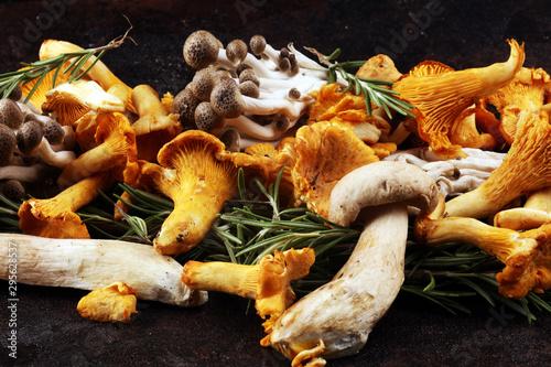 variety of raw mushrooms on wooden dark table Fototapet