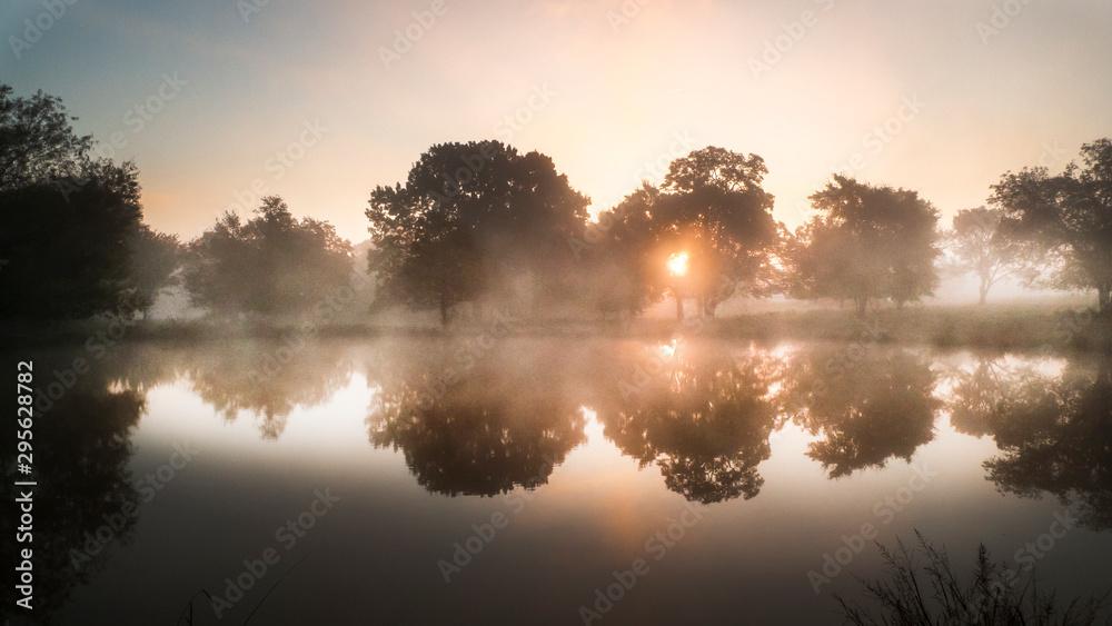 Fototapety, obrazy: Morning reflections