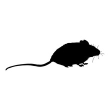 Vector Black Silhouette Of Mouse