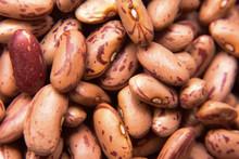 Beans In Pot Closeup