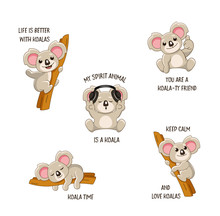 Funny Koala Stickers Set With Quotes