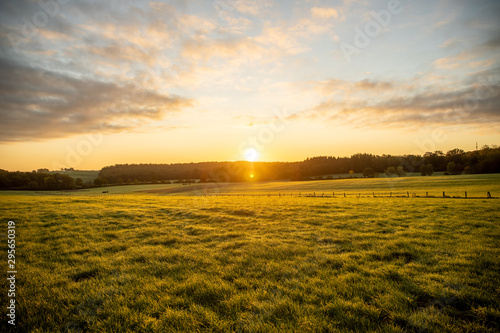 Recess Fitting Meadow Ciel nuageux lever de soleil nature prairie