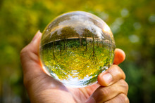 Crystal Ball Used As Telling O...