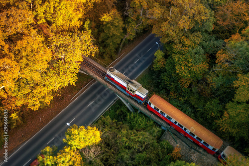 Foto auf Gartenposter Budapest Forest train in amazing autumn colors. Bright lights, fantastic mood. Children's train in Budapest. Szechenyi hegy hill to huvosvolgy hill to huvosvolgy. Children's train operate by children.