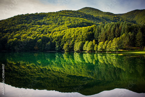 Beautiful turquoise lake surrounded by green forest and mountains. Balkana lake in Bosnia and Herzegovina. #295664957