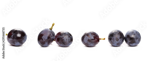 Fényképezés Fresh black muscat grapes isolated on white background