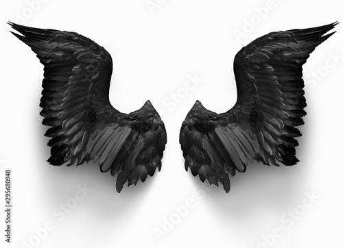 Photo pairs of black devil wings isolate with clipping path on white background