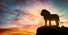 African Sunset With The Silhouette Of A Large Adult Lion Above A Rock