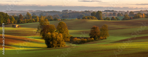 Poster Pierre, Sable beautiful autumn landscape - green undulating hills reminiscent of the Toscania landscape and trees in golden autumn colors. High resolution panorama