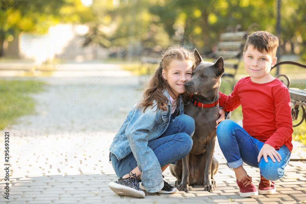 Fototapety, obrazy: Little children with cute dog in park